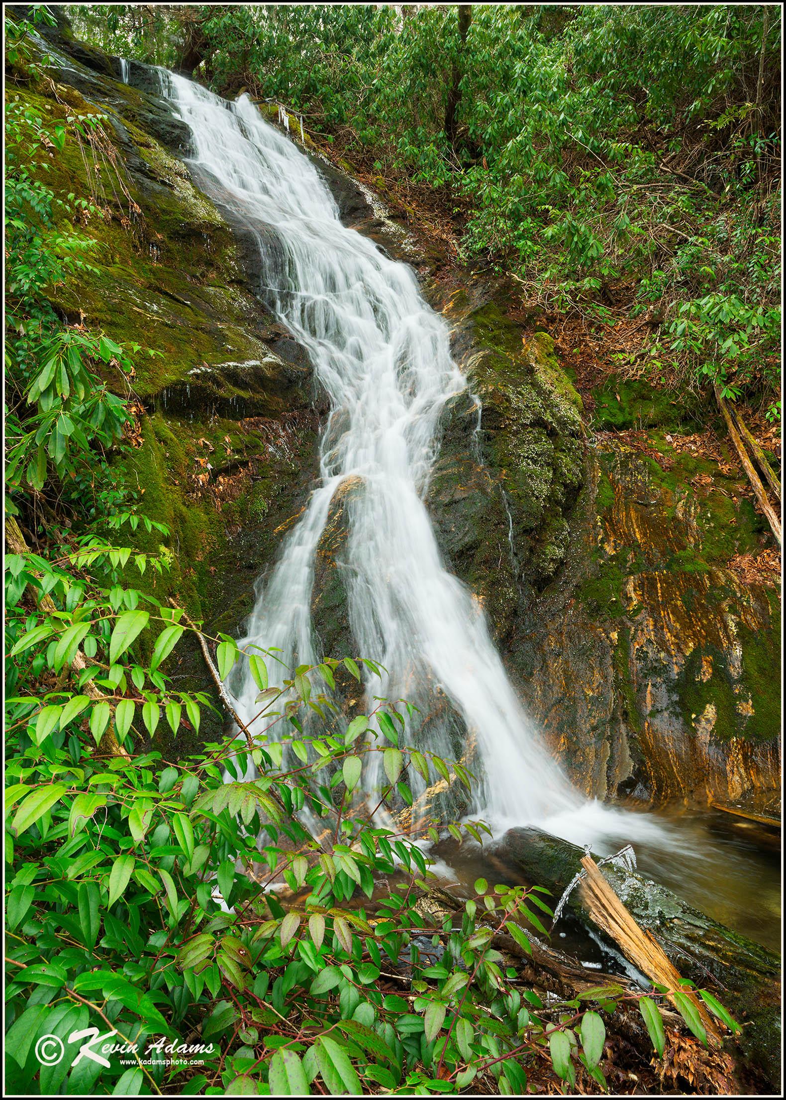 Alyssa Falls