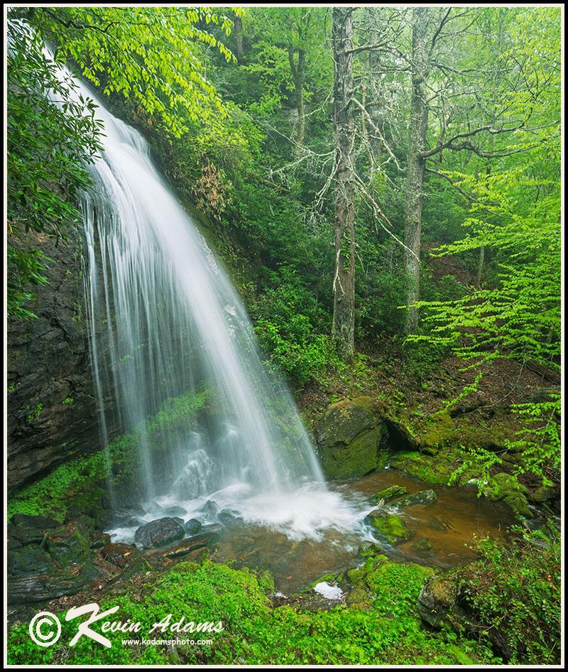 Loretta Falls