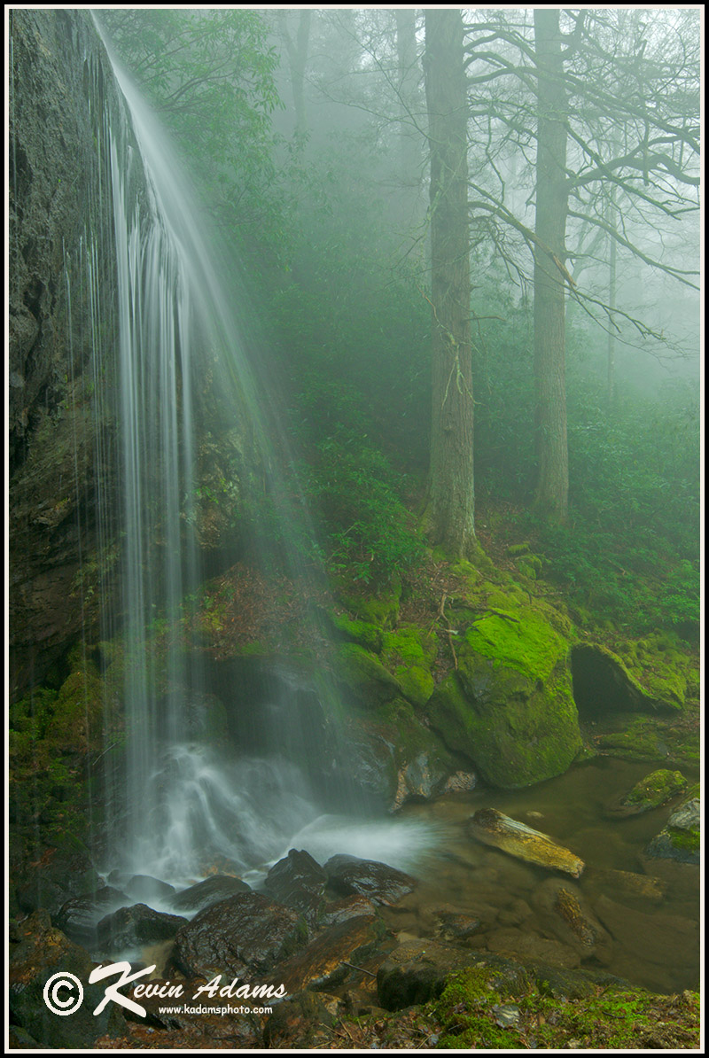 Another view of Loretta Falls in Nantahala National Forest, also shot it the rain. Nikon D300, Nikon 12-24mm lens at 16mm, polarizing filter, f/16, 0.8 second, ISO 200.