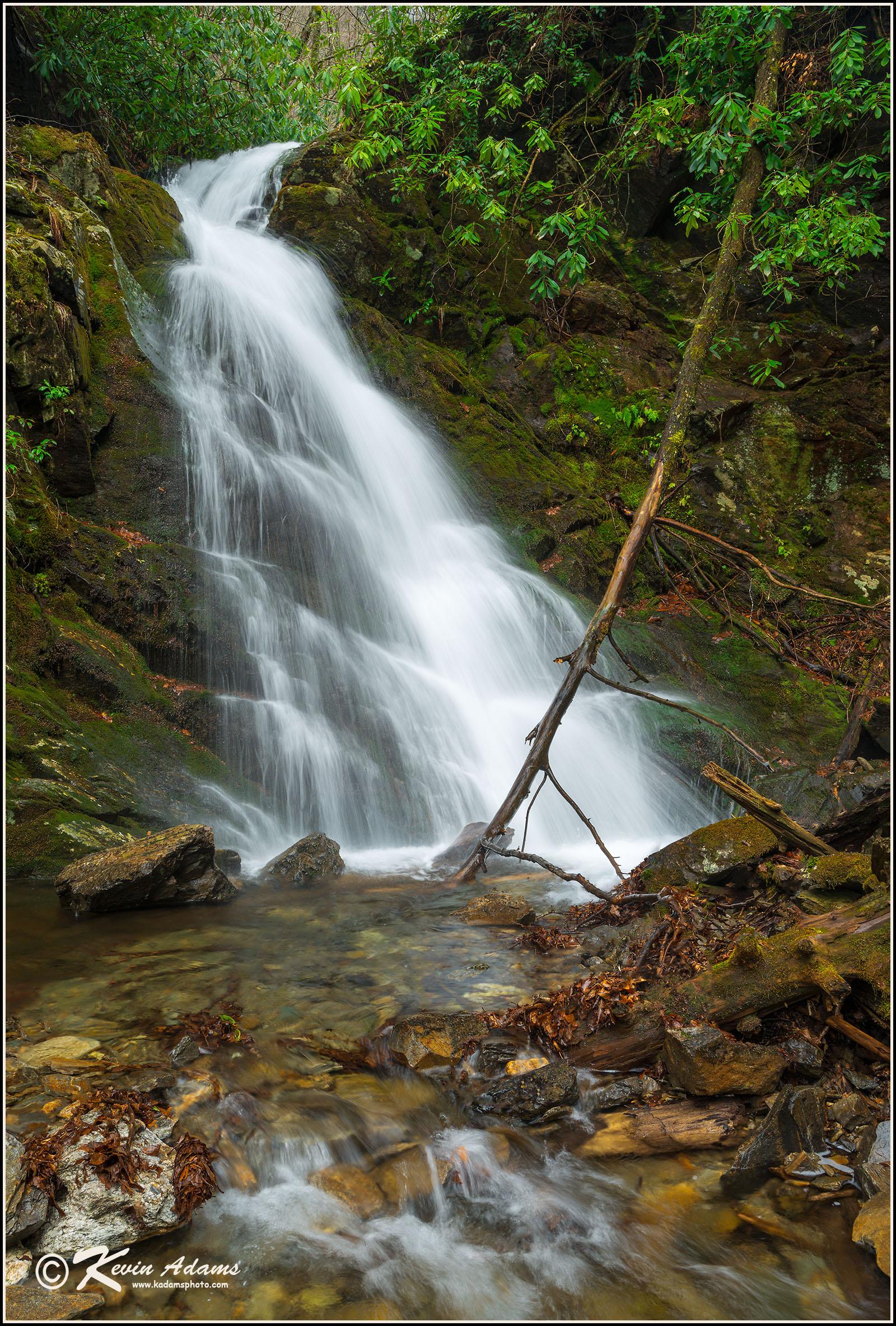 West Fork Falls on West Fork Campbell Creek,