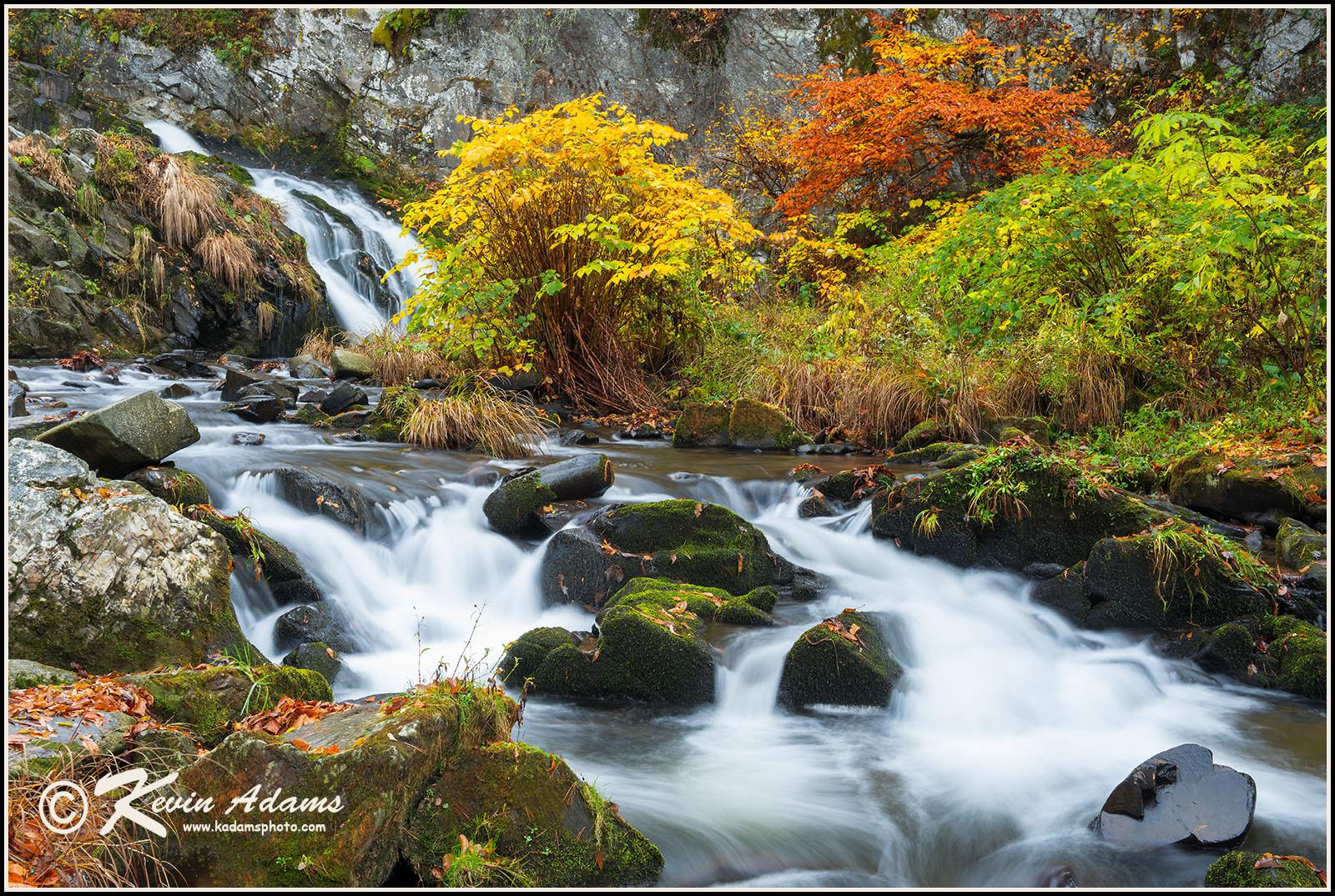 Whiteoak Falls