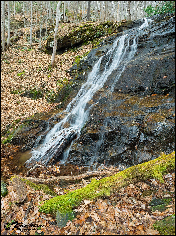 Falling Water Branch Falls
