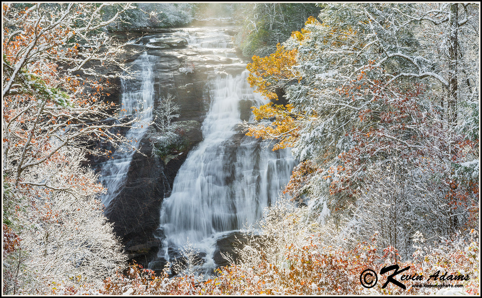 High Falls DuPont State Recreational Forest